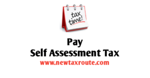 Pay Self Assessment Tax Online- New Tax Route